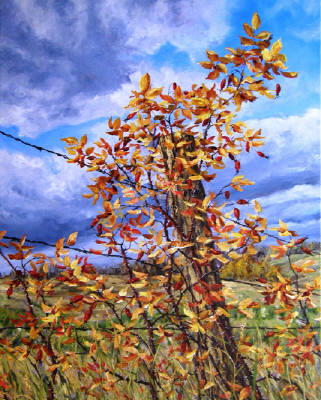 Artist: Cindy Barratt, Title: Alberta Fall Fence line - click for larger image